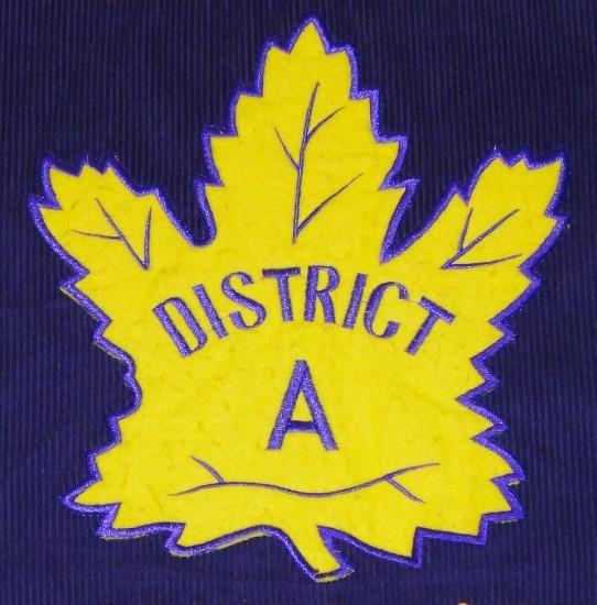 Lions District A patch